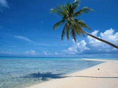 wallpaper beach hd. hawaii each background. each
