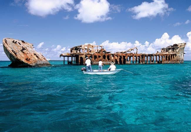 Bimini Bahamas  city photos gallery : Diving Bimini Bahamas | The Scuba Lady's Blog