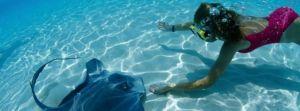 Scuba Dive Leslie ONeill Scuba Explorers